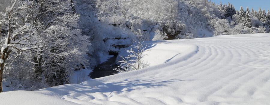 """被认定为日本遗产的""""终极的雪国十日町-真实传说!豪雪地带的故事"""""""