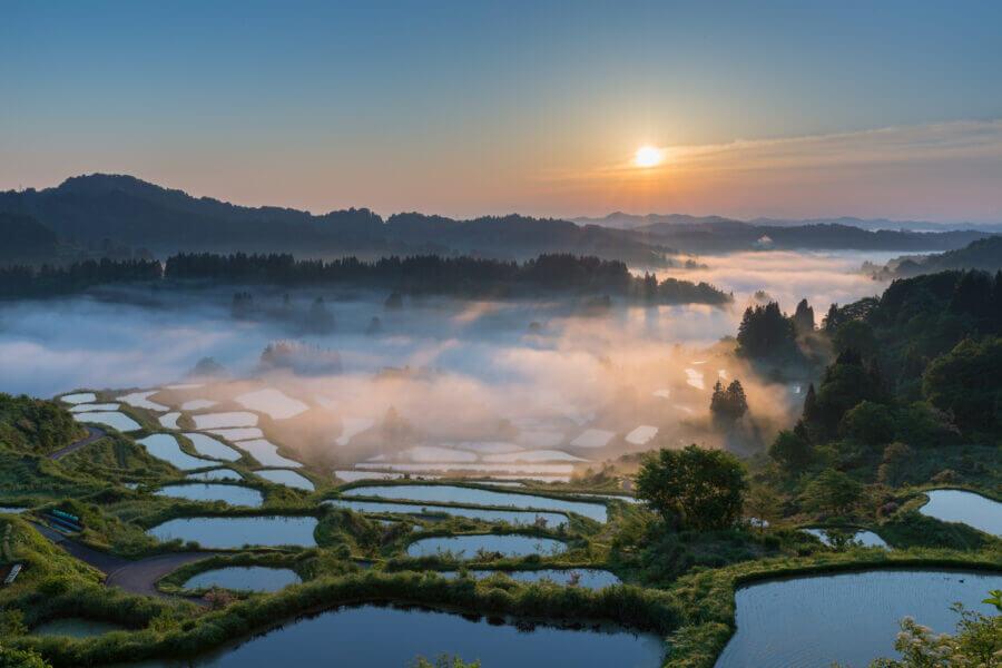 TANADA-rice field terraces-
